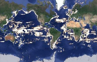 mapping global fishing